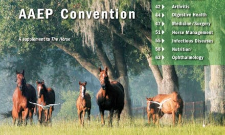 AAEP 2007 Convention Complete Coverage