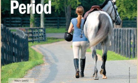 Horse Adoption Part 2: The Transition Period