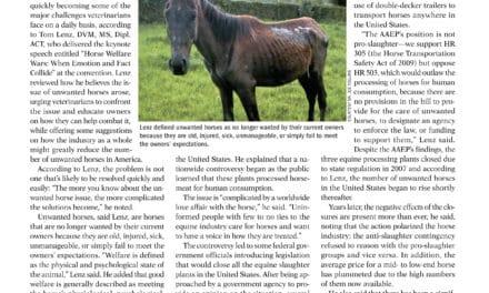 Keynote: Unwanted Horses