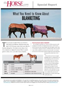 Horse Blanketing FAQs – The Horse
