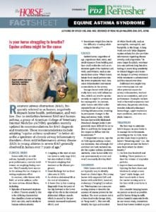 Equine Asthma Syndrome