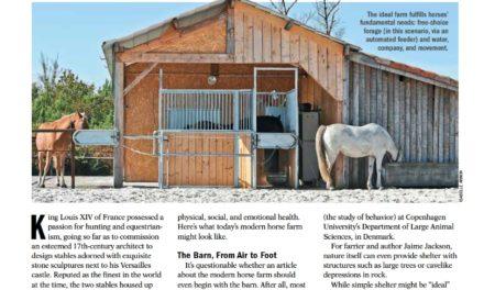 The Modern Horse Farm