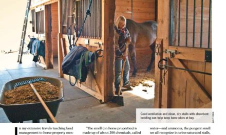 Squelching the Stink on Horse Farms