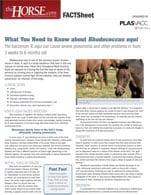Fact Sheet: <em>Rhodococcus equi</em>