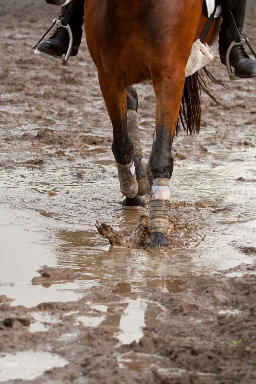 Muddy footing in arena