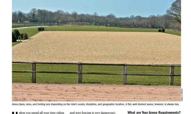 Installing an Outdoor Riding Arena: Where to Start