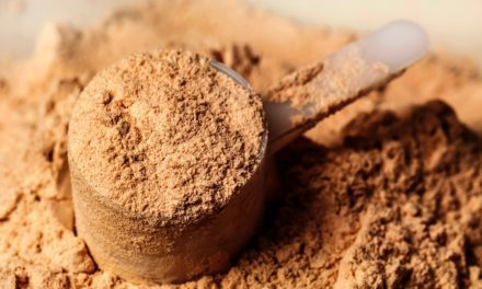 Try Supplementing Yeast When Changing a Horse's Diet