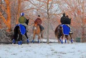 Podcast: How Do I Keep a Sweaty Horse Warm in Winter After Riding?