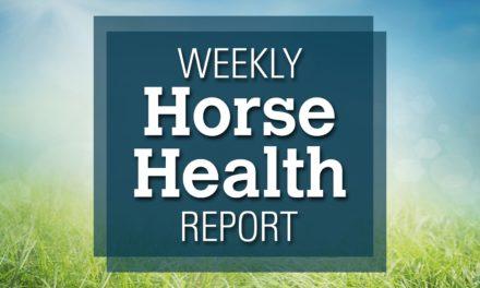 Melanomas in Horses