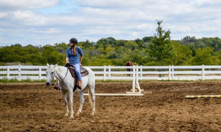 What's My Liability if Friends Ride in My Arena?
