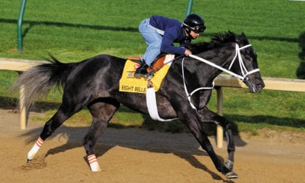 Studying Catastrophic Racehorse Breakdowns: Research That Can Save Lives