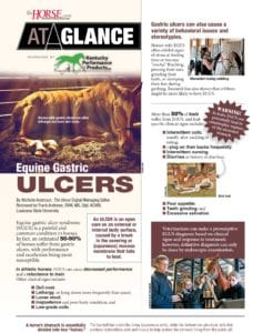 At a Glance: Equine Gastric Ulcers