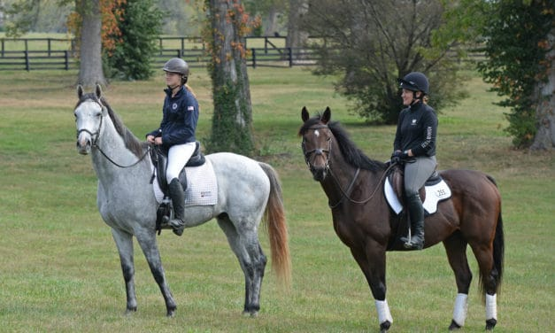 The Evolution of Thoroughbred Aftercare