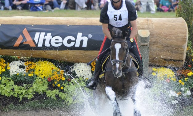 Science, Governing Bodies Unite to Improve Horse and Rider Safety in Equestrian Sports