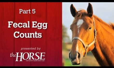 Deworming Part 5: Fecal Egg Counts