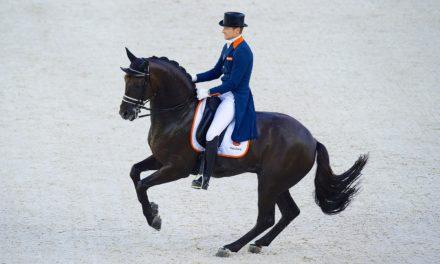 Optimizing Dressage Horses' Bodies for Peak Performance