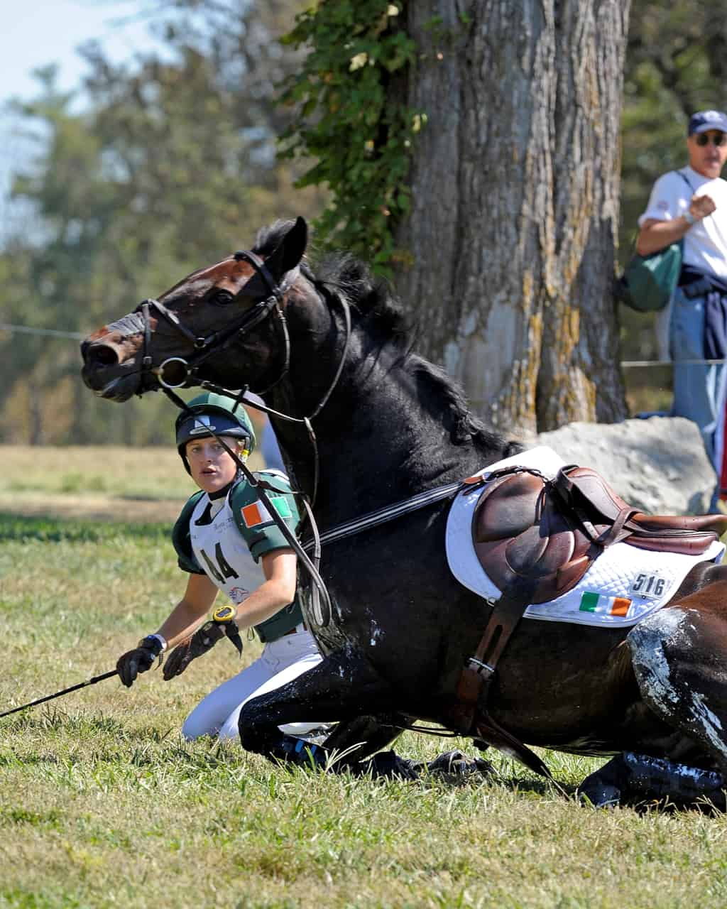 the right way to fall off a horse