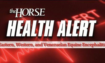 Health Alert: EEE, WEE, VEE