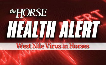 Four California Horses Diagnosed With West Nile Virus – The