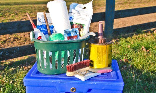 Horse Hoof Care Essentials at Hand