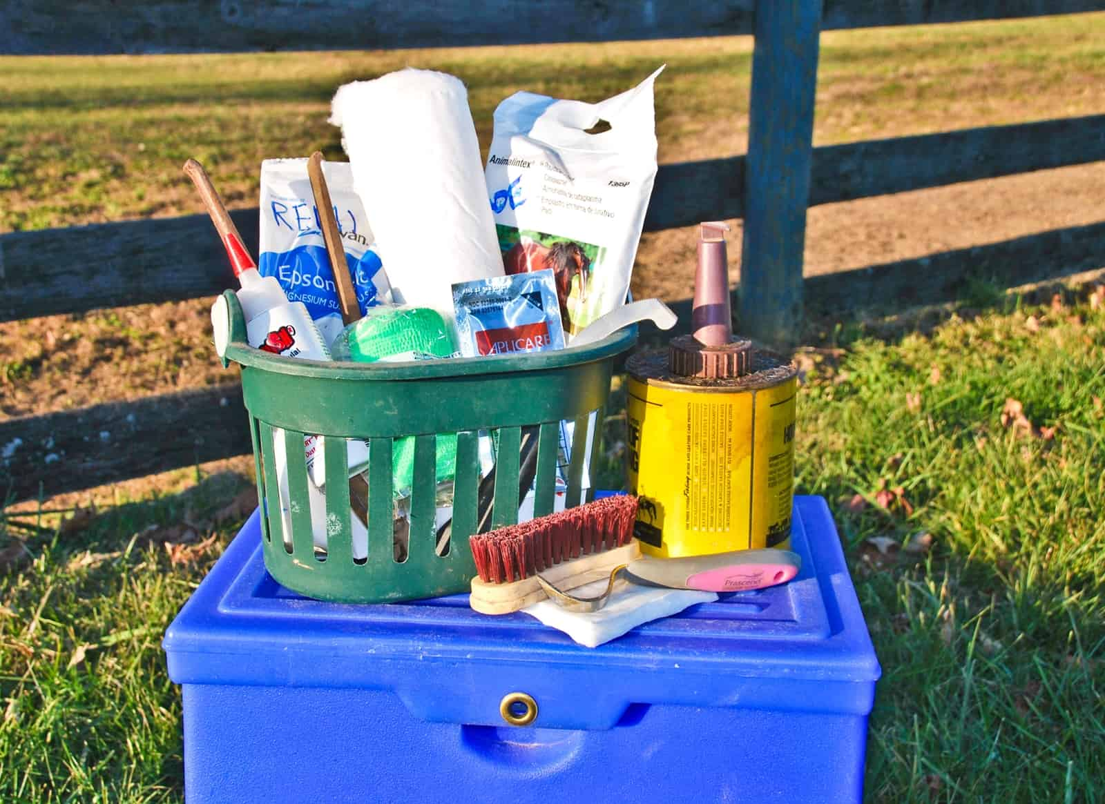 Horse Hoof Care Essentials