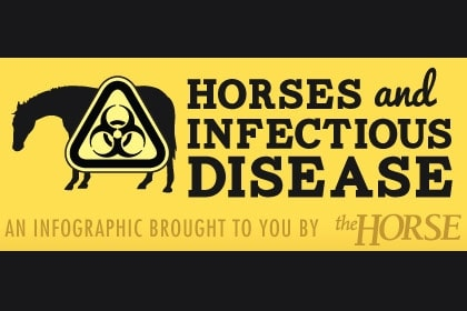 Horses and Infectious Disease