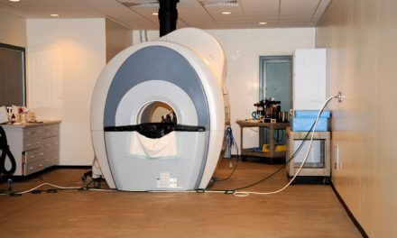 Could MRI Help Identify Early-Stage PPID?