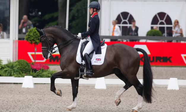 Exploring the Scientific Side of Dressage