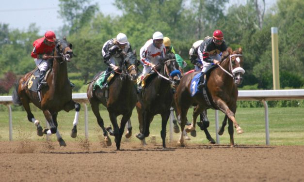 Bone Loss and Racehorse Breakdowns: What's the Connection?