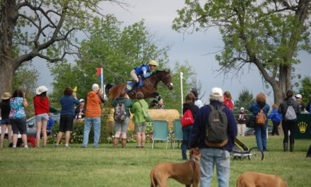 Rolex Kentucky: Horses and Shadows on Cross-Country