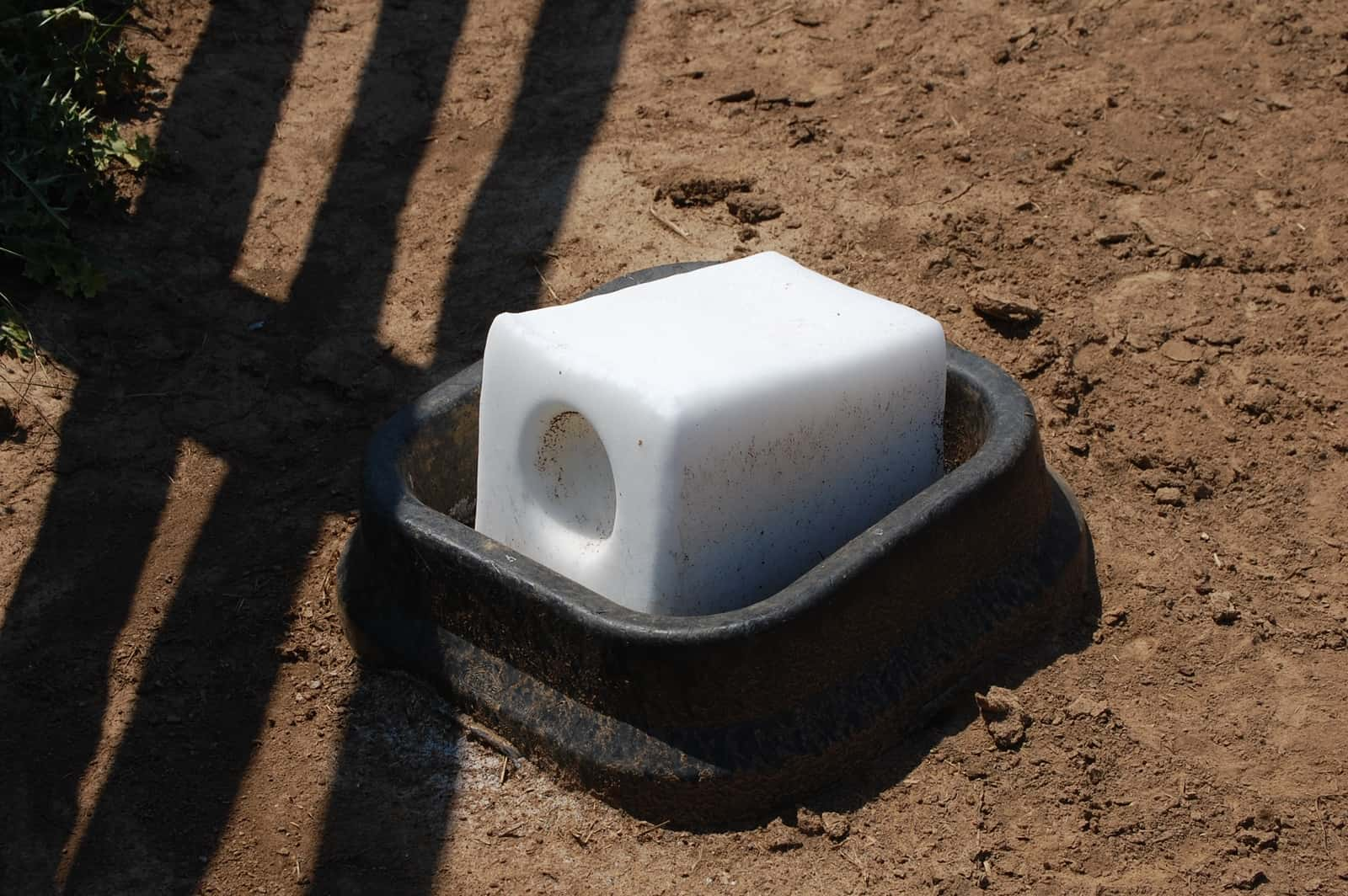 Choosing Salt and Mineral Blocks for Horses – The Horse