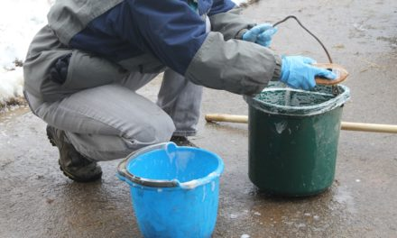 Cleaning Horse Feed Buckets: When, How, and Why?