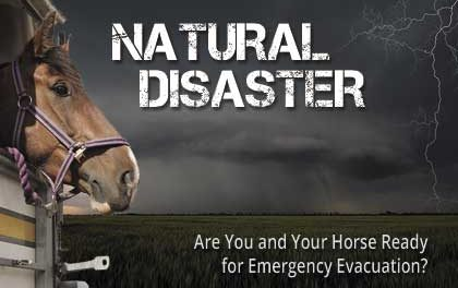 Natural Disaster: Are You and Your Horse Ready?