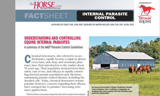 Understanding and Controlling Equine Internal Parasites