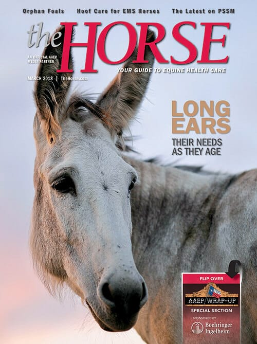 The Horse: Your Guide to Equine Health Care  - October 2019