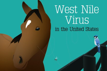west nile virus in u s horses the horse