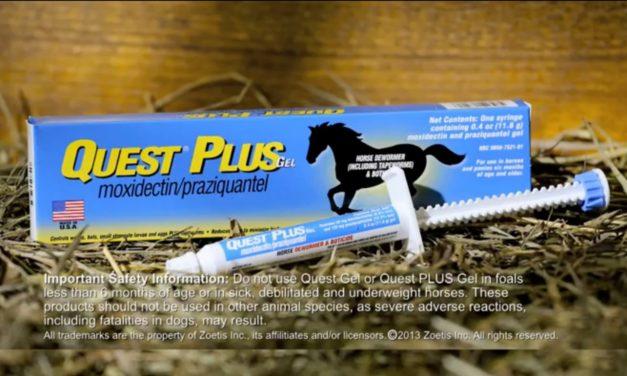 Quest Plus Deworming