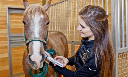 Dose Your Horse Like a Pro