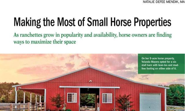 Making the Most of Small Horse Properties