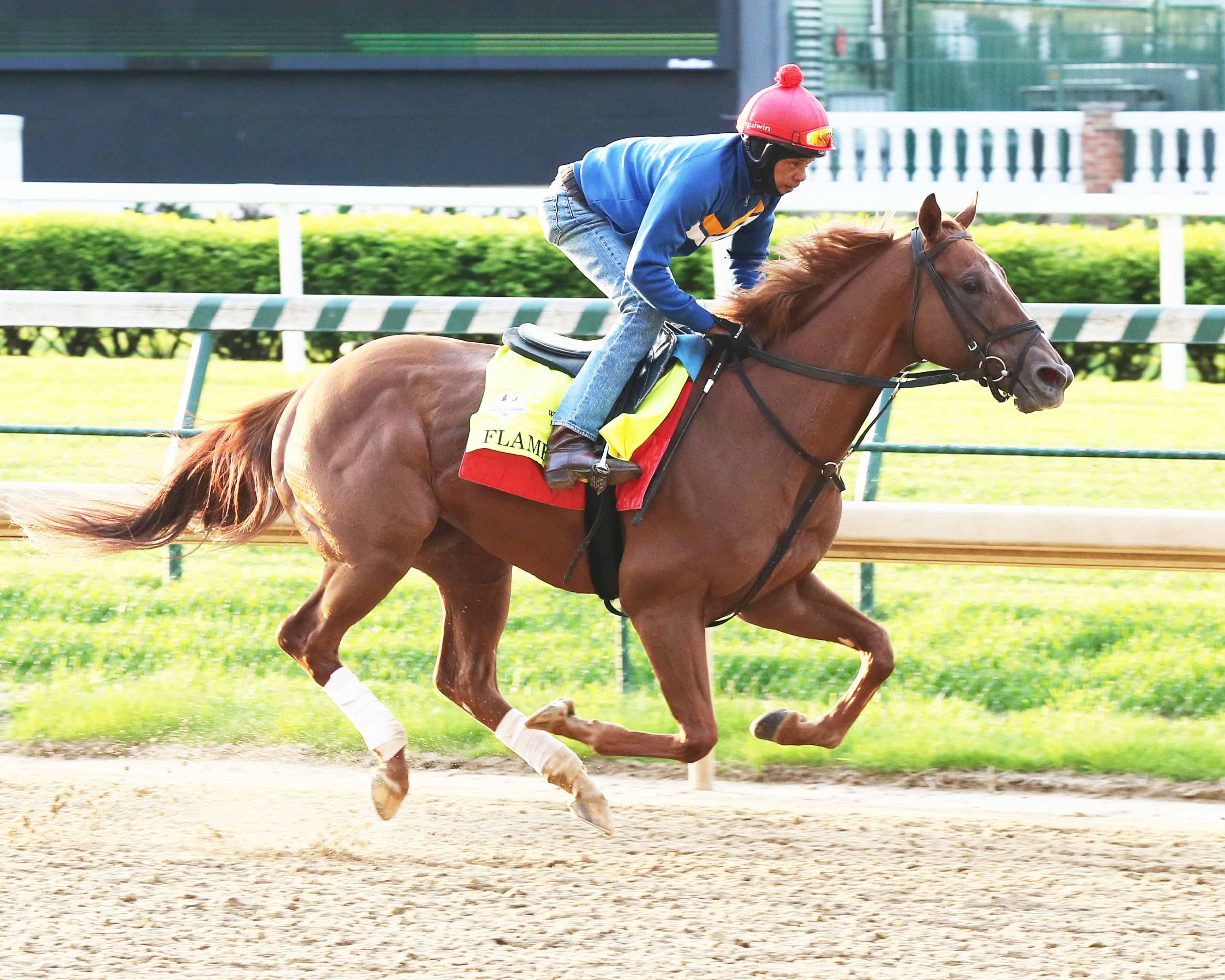 Kentucky Derby Victory for Flameaway Would Benefit Equine Research