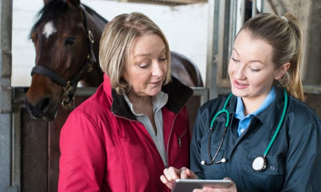RESPE: Tracking Contagious Equine Diseases in France