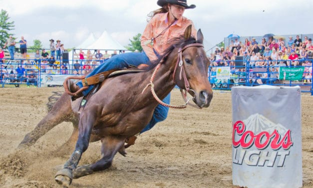 Study: 50% of Barrel Racing Horses Could Experience EIPH