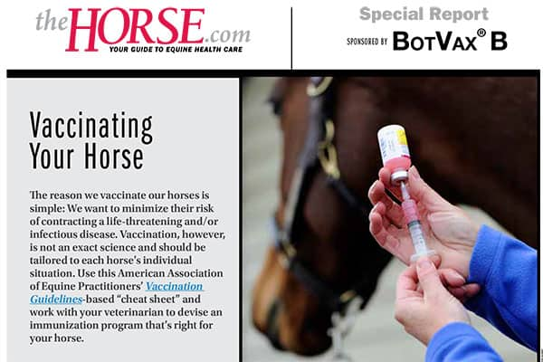 Equine Vaccination Cheat Sheet