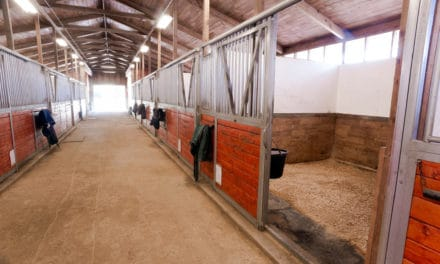 Prototype Ionization Device Doesn't Reduce Dust in Horse Stables
