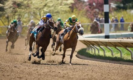 Catastrophic Injuries in Racehorses: KHRC Funds Gluck Center Study