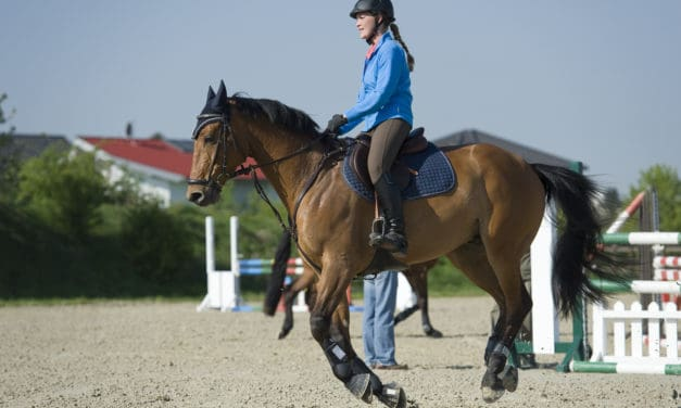 Diet, Exercise Can Help Some Horses with Type 2 PSSM
