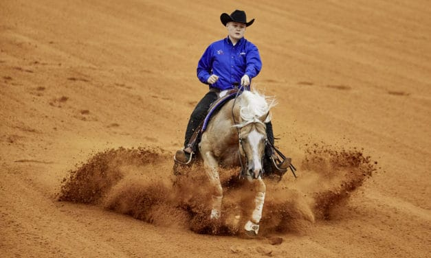 FEI Votes to Maintain Reining, Works Agreement With NRHA