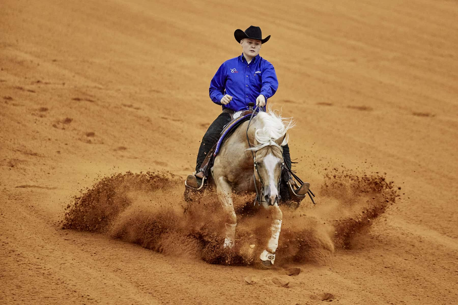 2018 Weg Reining U S Wins Fifth Consecutive Team Gold Medal The Horse