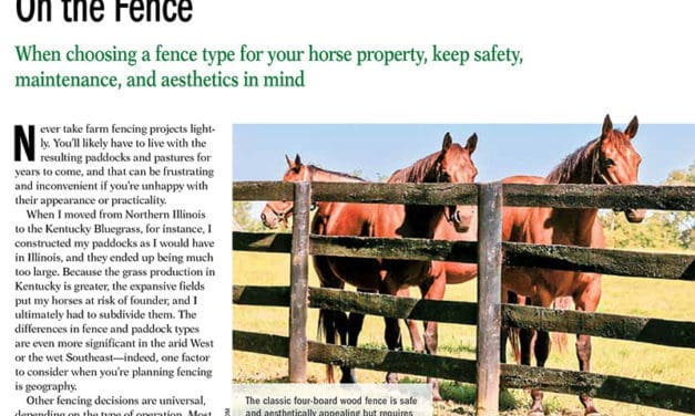 On the Fence: What's the Best Fencing for Horse Property?