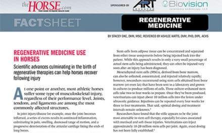 Fact Sheet: Regenerative Medicine Use in Horses